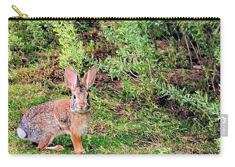 Bunny Carry-all Pouch featuring the photograph One Hop From The Warren by Kristin Elmquist