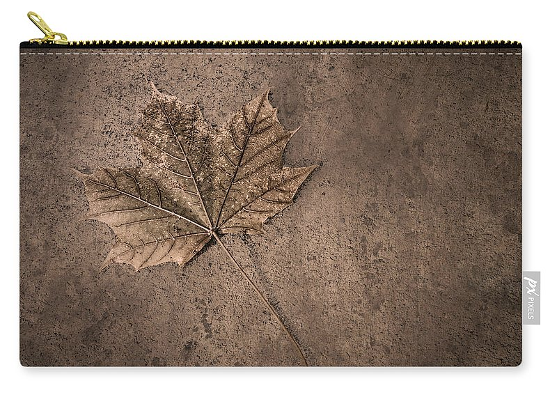Scott Norris Photography Carry-all Pouch featuring the photograph One Leaf December 1st by Scott Norris