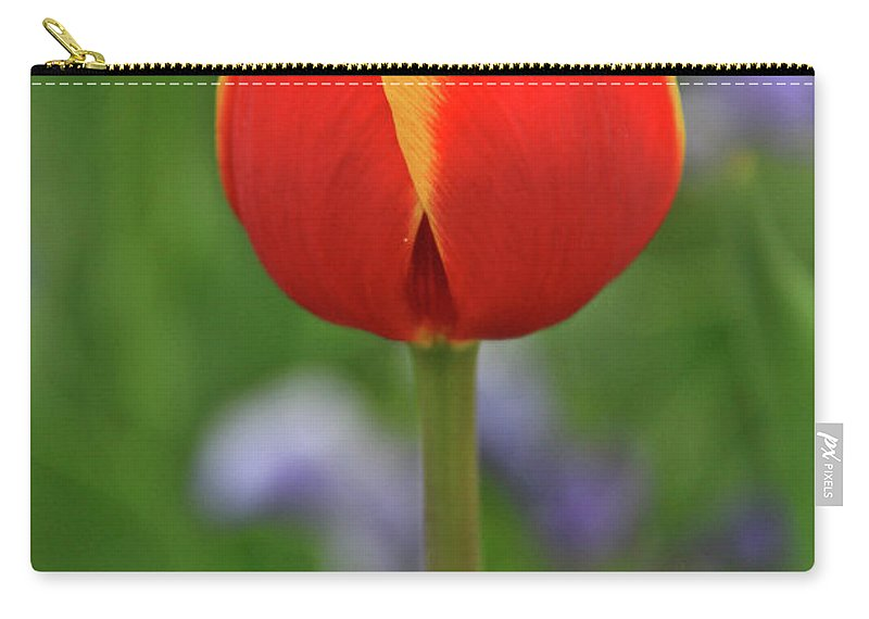 Flowers Carry-all Pouch featuring the photograph One Love by Scott Mahon