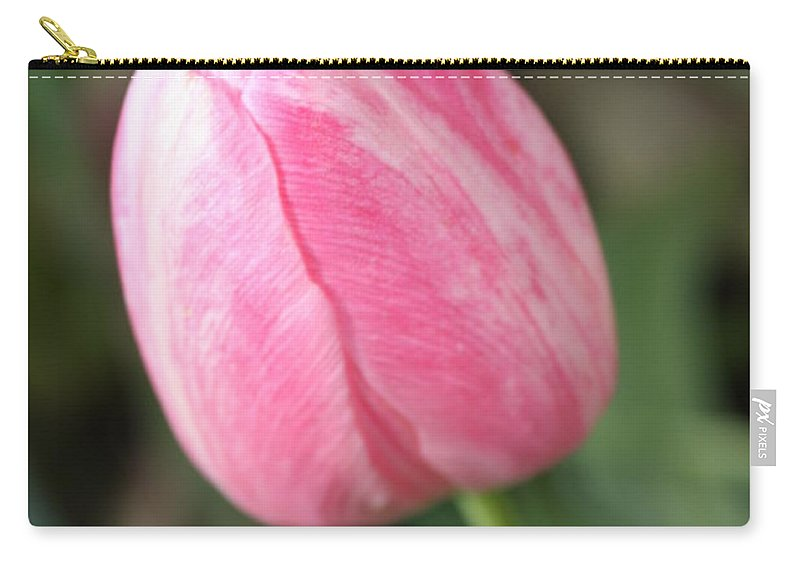 Pink Tulip Carry-all Pouch featuring the photograph One Lovely Pink Tulip by Carol Groenen