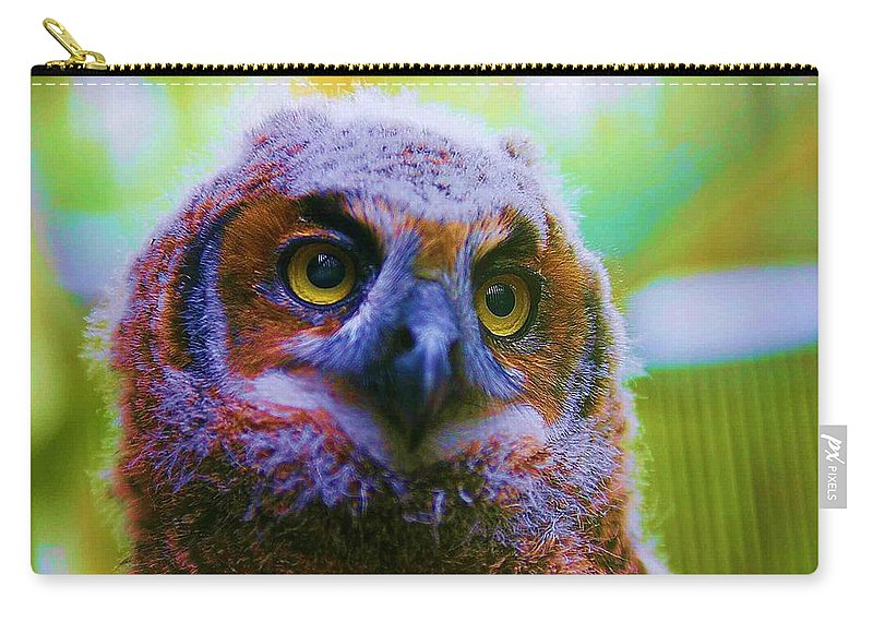 Owl Carry-all Pouch featuring the photograph Opalescent Owl by Nelson Strong