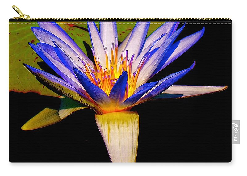 Chicago Botanic Garden Carry-all Pouch featuring the photograph Open To The Sun by Tim G Ross
