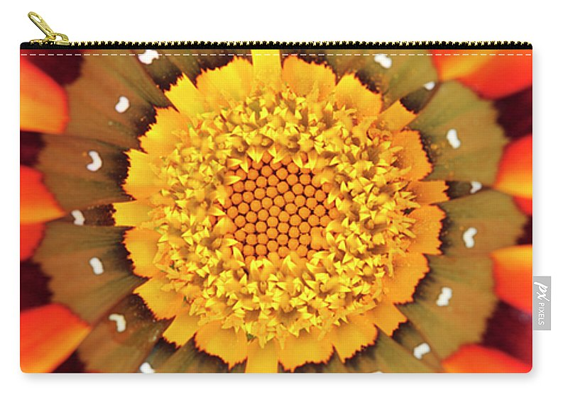 Gazania Carry-all Pouch featuring the photograph Orange African Daisy by Neil Overy