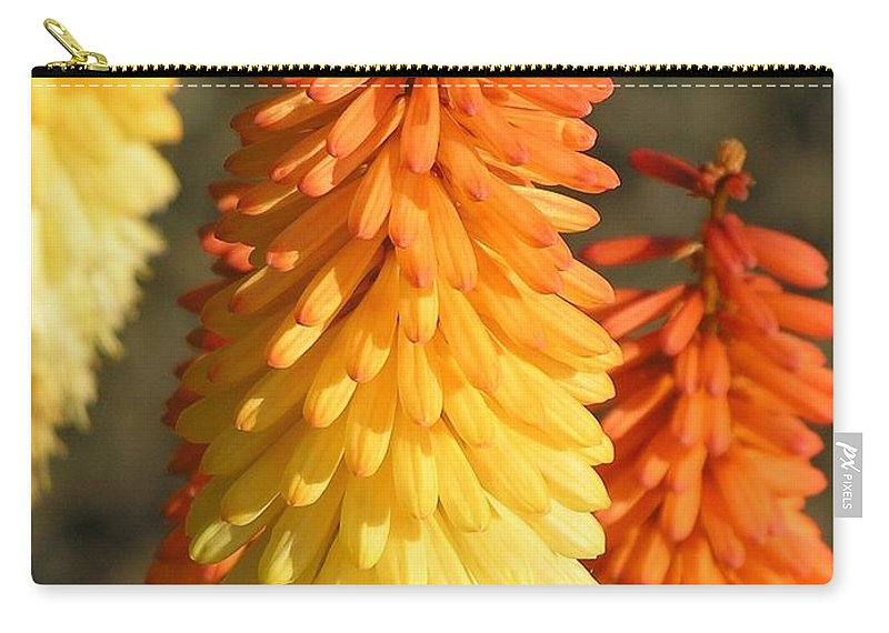 Orange Carry-all Pouch featuring the photograph Orange And Gold Flower by Diane Greco-Lesser
