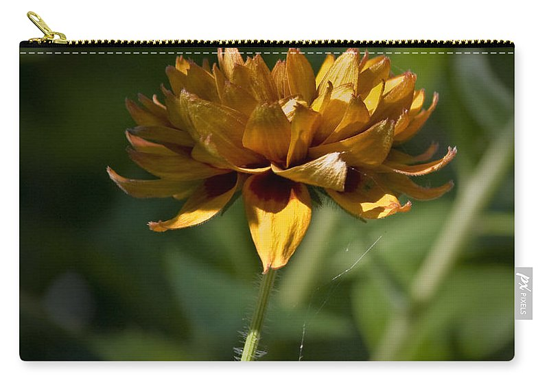 Orange Carry-all Pouch featuring the photograph Orange Blanket Flower by Teresa Mucha