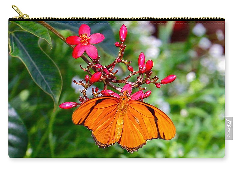 Butterfly Carry-all Pouch featuring the photograph Orange Butterfly by Denise Mazzocco