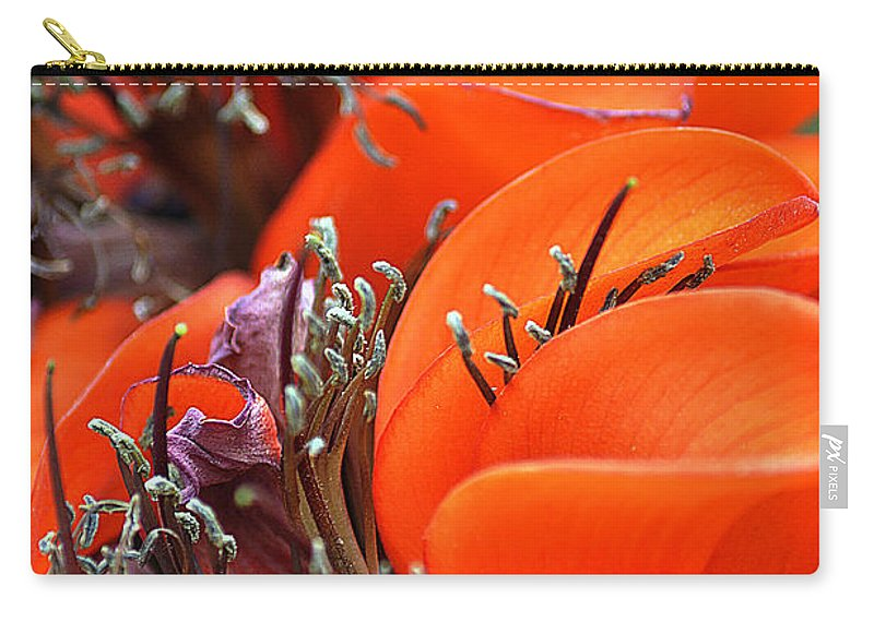 Clay Carry-all Pouch featuring the photograph Orange by Clayton Bruster