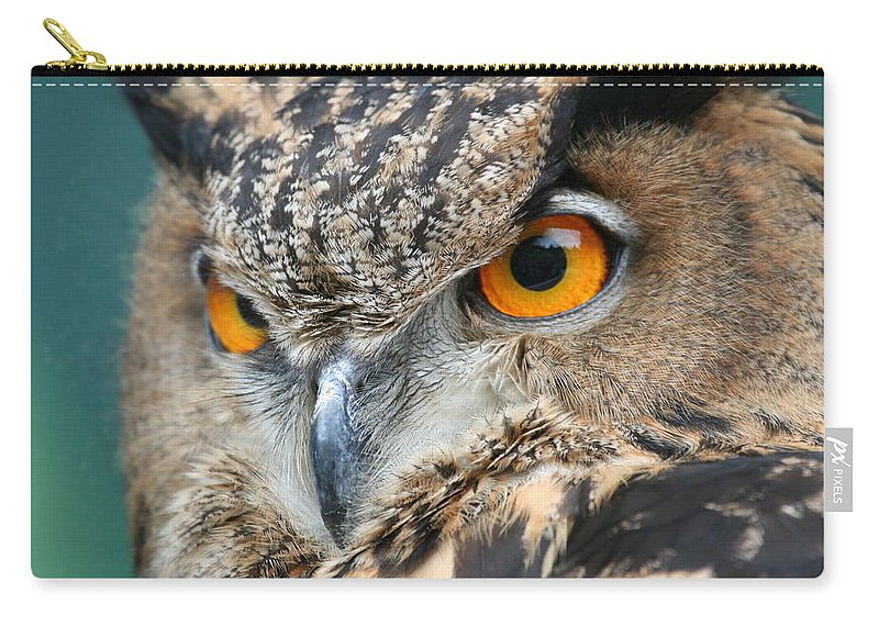 Owl Carry-all Pouch featuring the photograph Orange Crush by Laddie Halupa