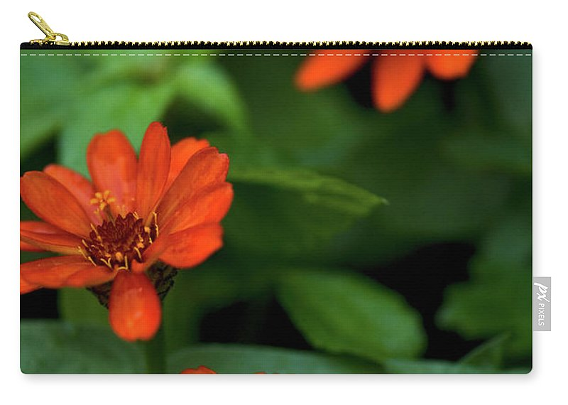 Daisey's Carry-all Pouch featuring the photograph Orange Daisey's by Paul Mangold