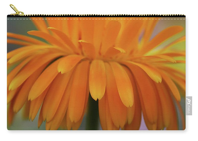 Carry-all Pouch featuring the photograph Orange Glow by Deborah Benoit