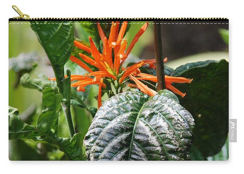 Banana Leaf Carry-all Pouch featuring the photograph Orange Plants by Rob Hans