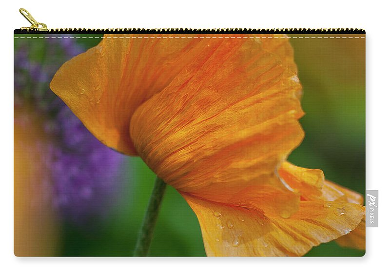 Poppy Carry-all Pouch featuring the photograph Orange Poppy Flower by Heiko Koehrer-Wagner
