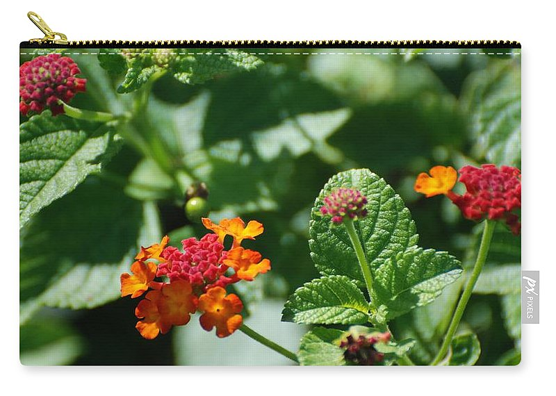 Orange Carry-all Pouch featuring the photograph Orange Red Flowers by Rob Hans