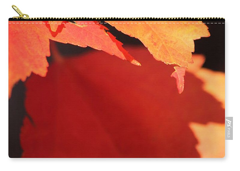 Fall Carry-all Pouch featuring the photograph Orange Shadows by Lauri Novak