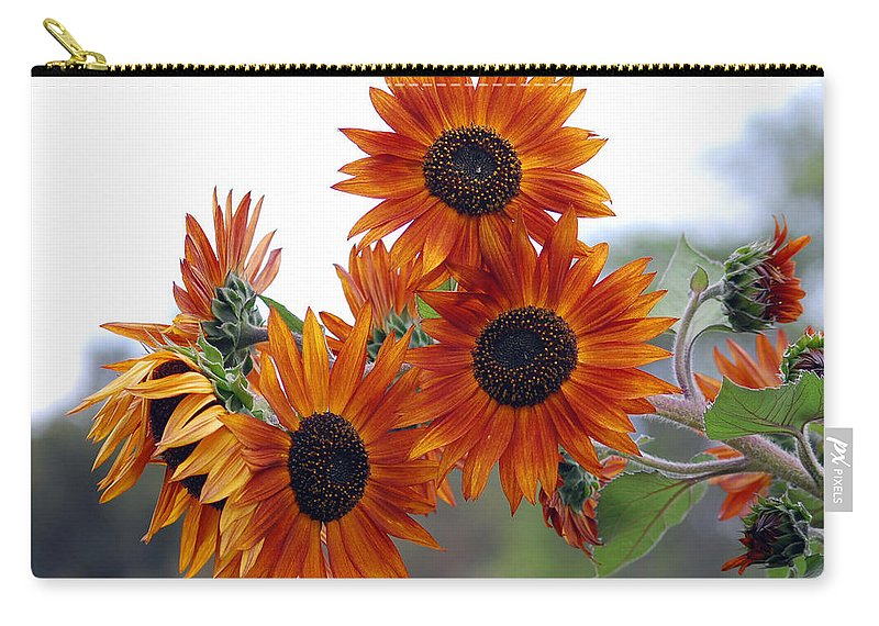 Sunflower Carry-all Pouch featuring the photograph Orange Sunflower 1 by Amy Fose