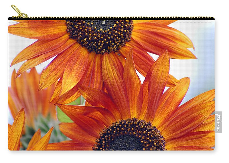 Sunflower Carry-all Pouch featuring the photograph Orange Sunflower 2 by Amy Fose