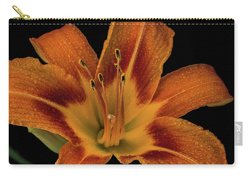 Lily Carry-all Pouch featuring the photograph Orange Tiger Lily by Greg Thiemeyer