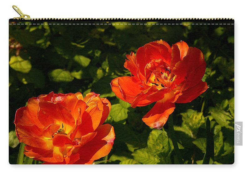 'orange Tulips' Carry-all Pouch featuring the photograph Orange Tulips In My Garden by Helmut Rottler