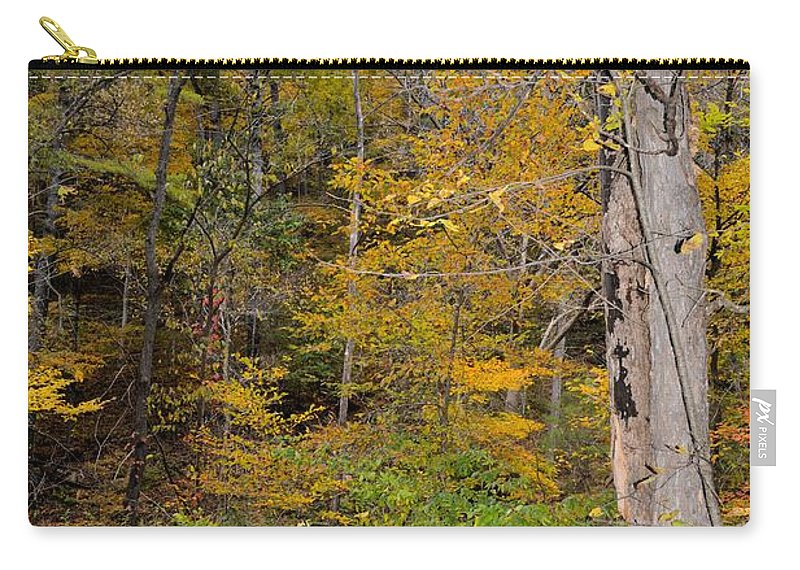 Forest Carry-all Pouch featuring the photograph Orange Woods by Bonfire Photography