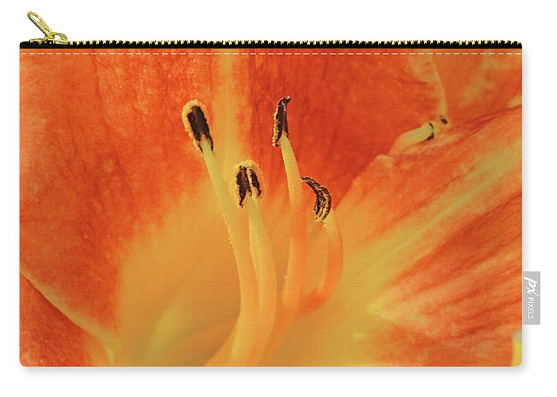 Daylilies Carry-all Pouch featuring the photograph Orange-yellow Daylily by Regina Geoghan