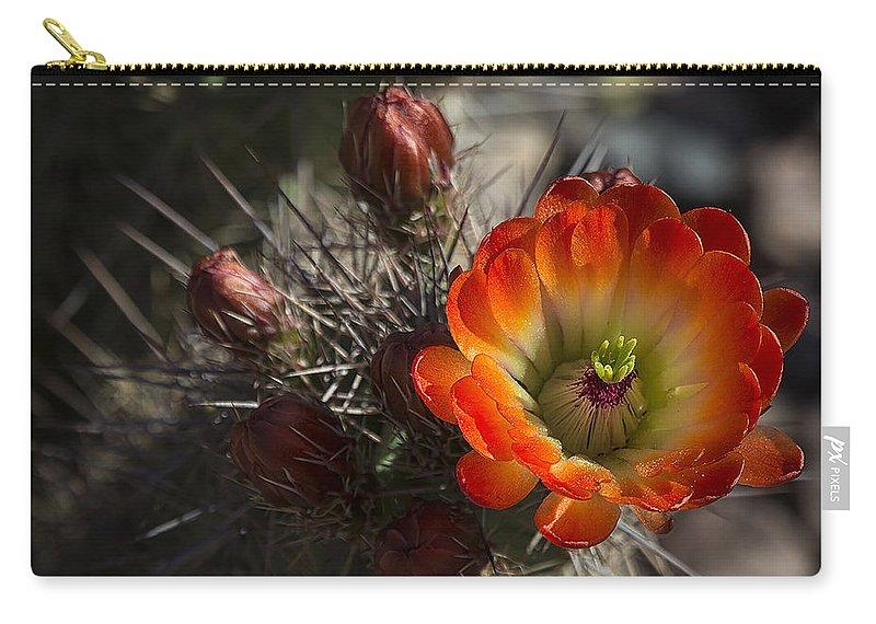 Hedgehog Cactus Carry-all Pouch featuring the photograph Orange You A Hedgehog by Saija Lehtonen