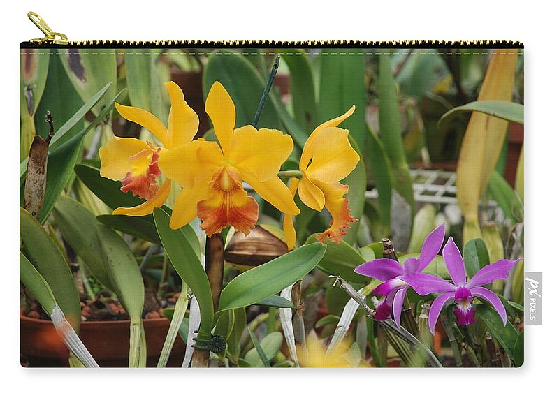 Orange Carry-all Pouch featuring the photograph Orangepurple Orchids by Rob Hans