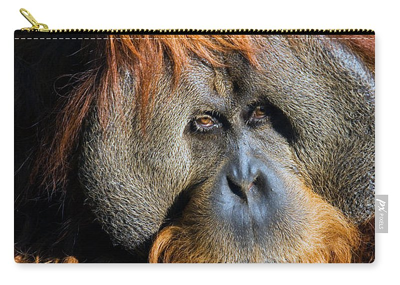 Orangutan Carry-all Pouch featuring the photograph Orangutan by Randall Ingalls