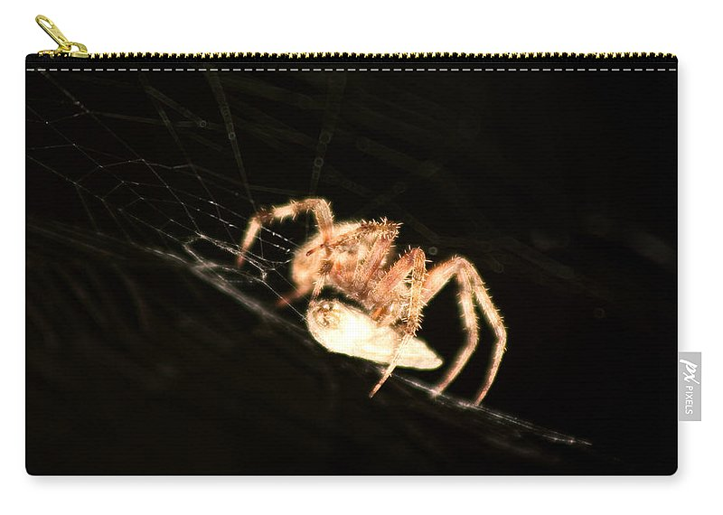Spider Carry-all Pouch featuring the photograph Orb Spider by Anthony Jones