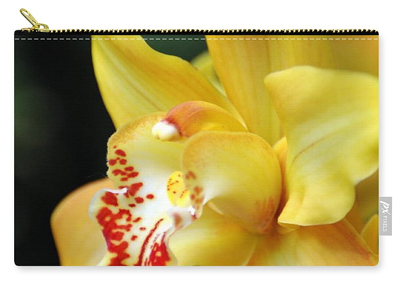 Orchid Carry-all Pouch featuring the photograph Orchid 24 by Marty Koch