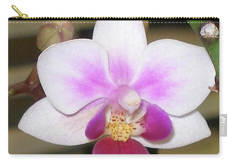Purple Carry-all Pouch featuring the photograph Orchid Explosion by Maria Bonnier-Perez