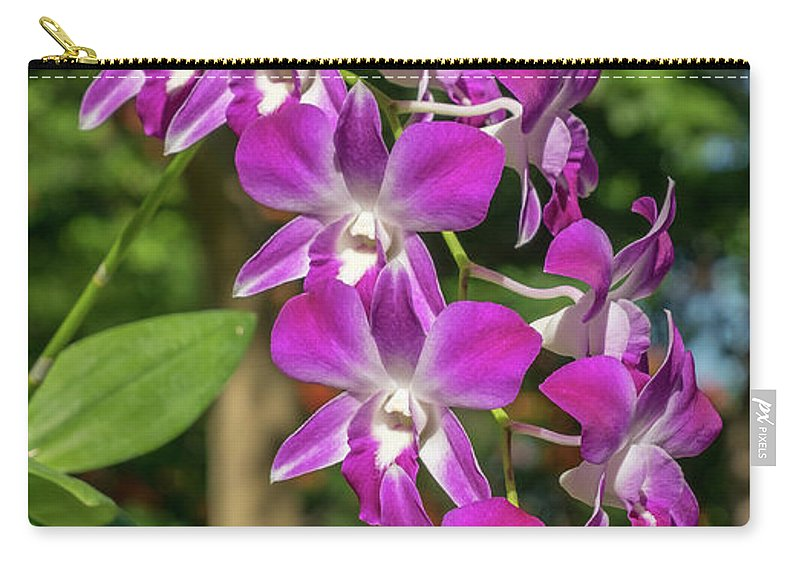 Orchid Carry-all Pouch featuring the photograph Orchid by Que Siam