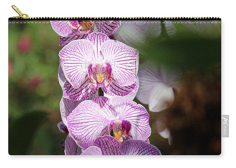Orchid Carry-all Pouch featuring the photograph Orchid Wonders by Jamie Smith