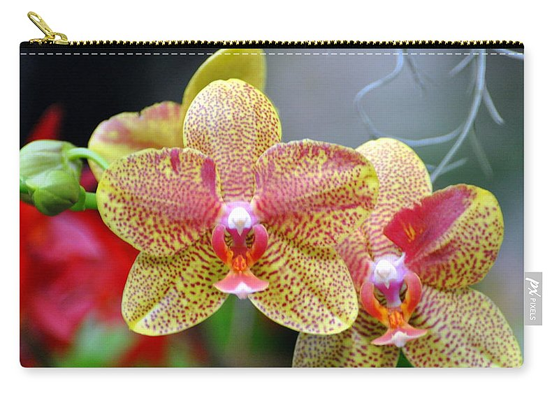 Orchidsflowers Carry-all Pouch featuring the photograph Orchids 35 by Marty Koch