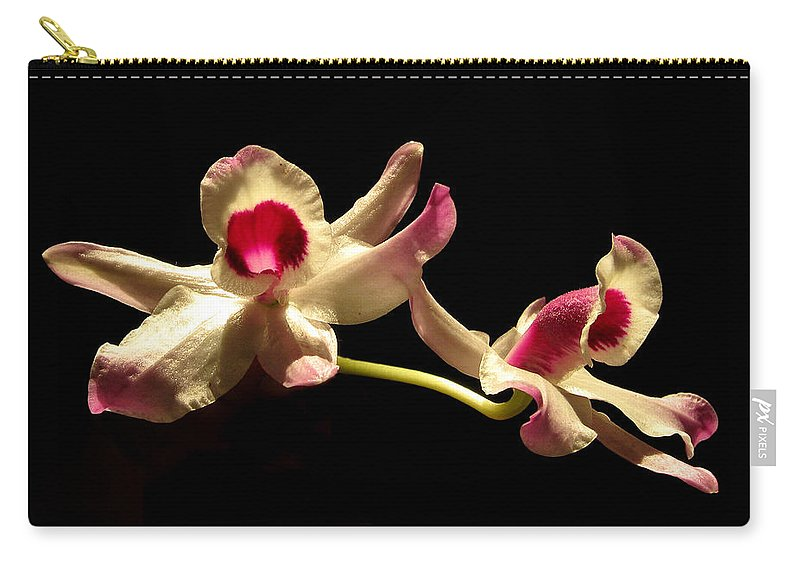 Nature Carry-all Pouch featuring the photograph Orchids Only by Peg Urban