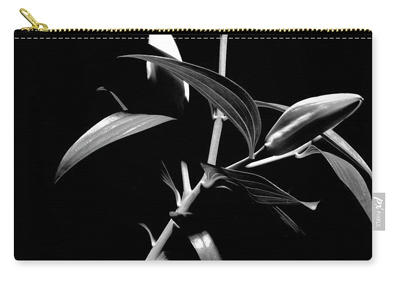 Black And White Carry-all Pouch featuring the photograph Oriental Lily Two by Frederic A Reinecke