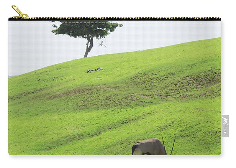 Oryx Carry-all Pouch featuring the photograph Oryx On Hill by Jim And Emily Bush