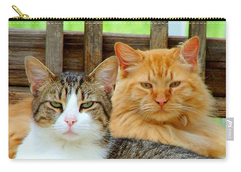 Cats Carry-all Pouch featuring the photograph Oscar And Red by J R Seymour