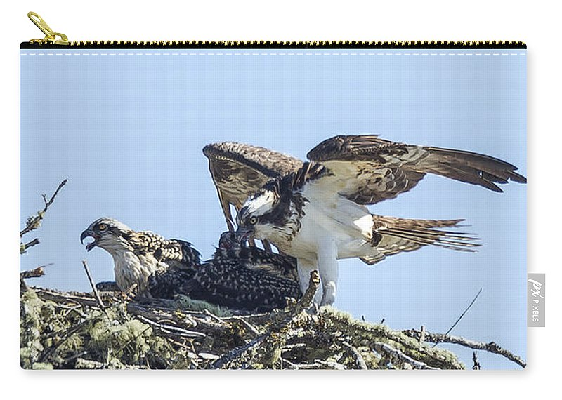 Osprey Carry-all Pouch featuring the photograph Osprey Family Portrait No. 1 by Belinda Greb