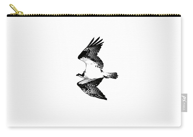 Osprey Carry-all Pouch featuring the photograph Osprey Flight by Rachel Morrison