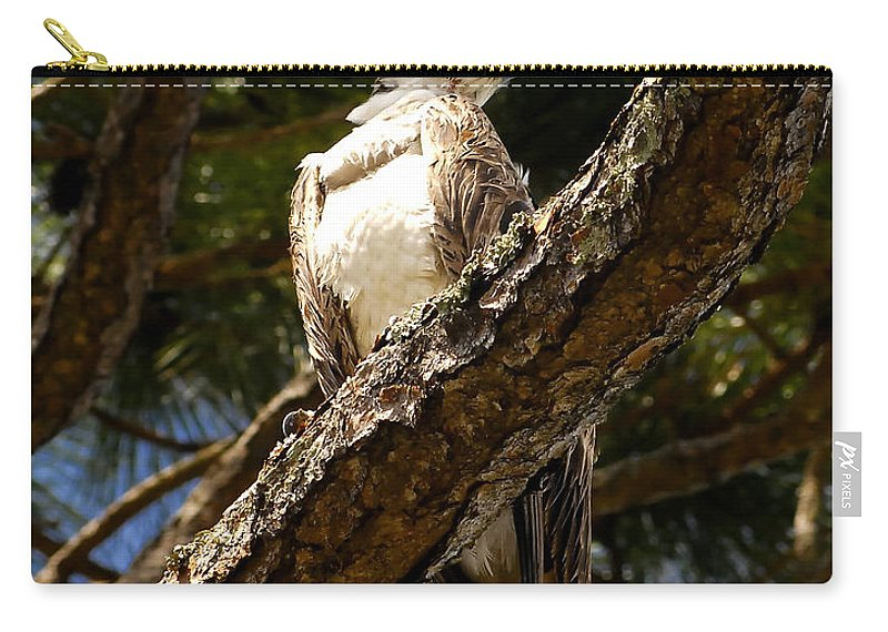 Osprey Carry-all Pouch featuring the photograph Osprey Hunting by David Lee Thompson