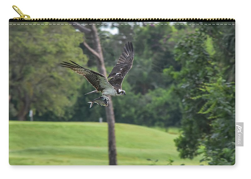 William Tasker Carry-all Pouch featuring the photograph Osprey With Catch by William Tasker