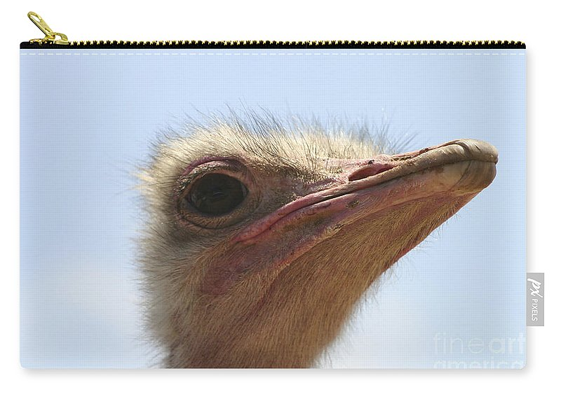 Ostrich Carry-all Pouch featuring the photograph Ostrich Head Close Up by Danny Yanai