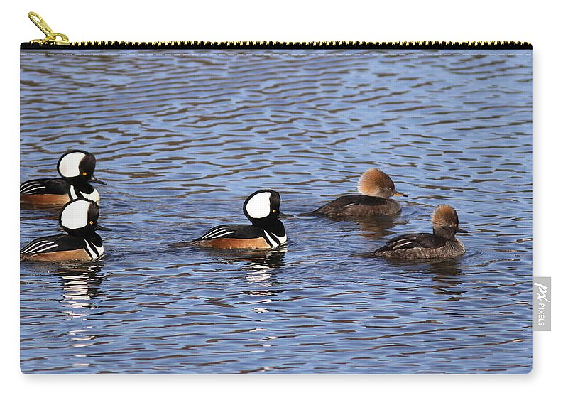 Hooded Merganser Carry-all Pouch featuring the photograph Out For A Stroll by Travis Truelove