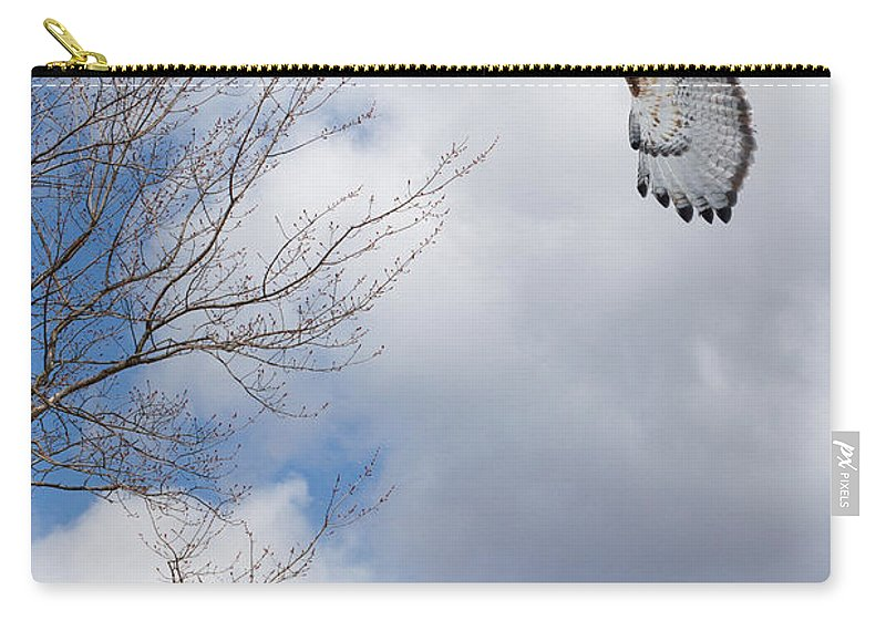 Redtail Hawk Carry-all Pouch featuring the photograph Out Of The Blue by Bill Wakeley