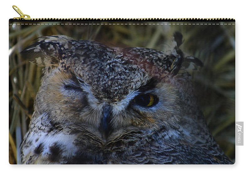 Owl Carry-all Pouch featuring the photograph Owl by Anthony Jones