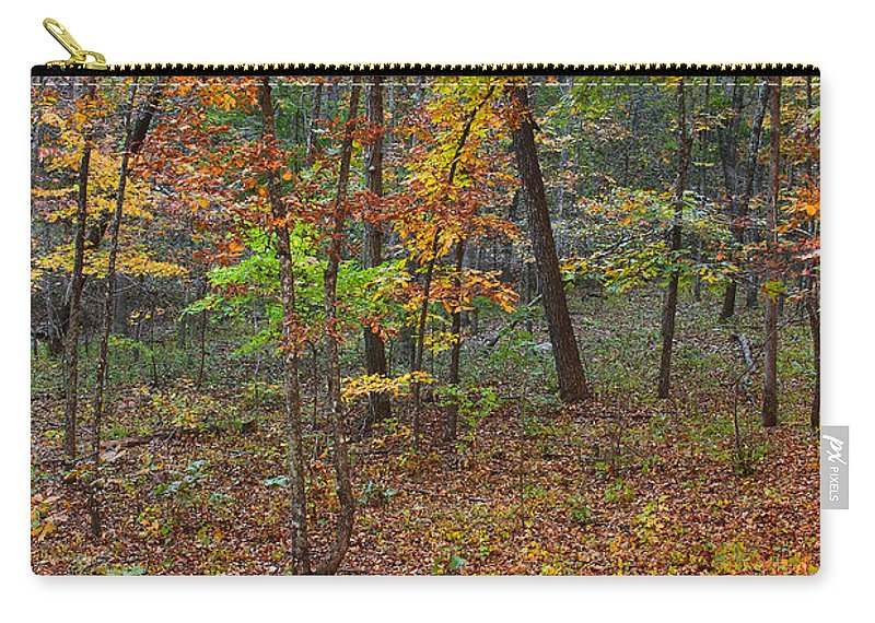 Fall Foliage Carry-all Pouch featuring the photograph Ozark Forest In Fall 1 by Greg Matchick