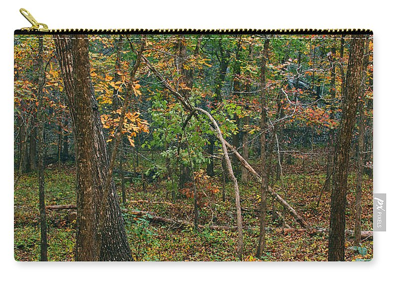 Trees Carry-all Pouch featuring the photograph Ozark Forest In Fall 2 by Greg Matchick