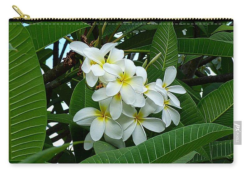 Hawaii Carry-all Pouch featuring the photograph P1060051 by Robert Abbett