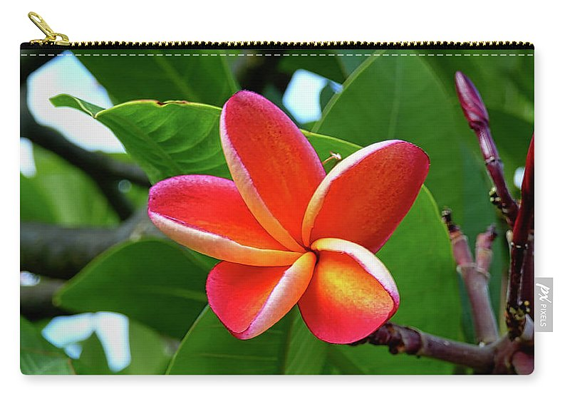 Hawaii Carry-all Pouch featuring the photograph P1060059 by Robert Abbett