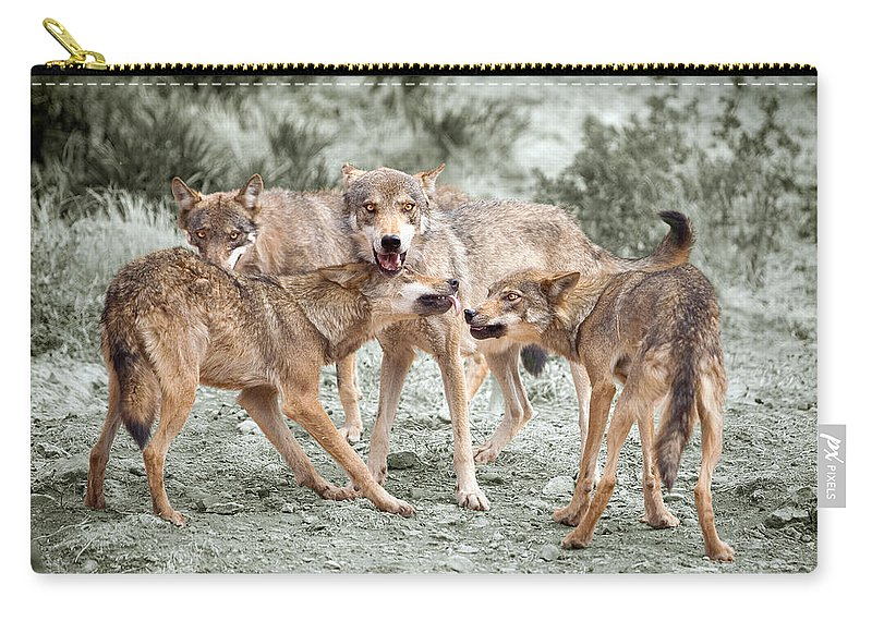 Wolf Carry-all Pouch featuring the photograph Pack Dispute by Mal Bray